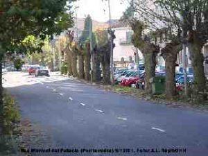 Poda na rúa Manuel del palacio (Pontevedra) 5/12/2001