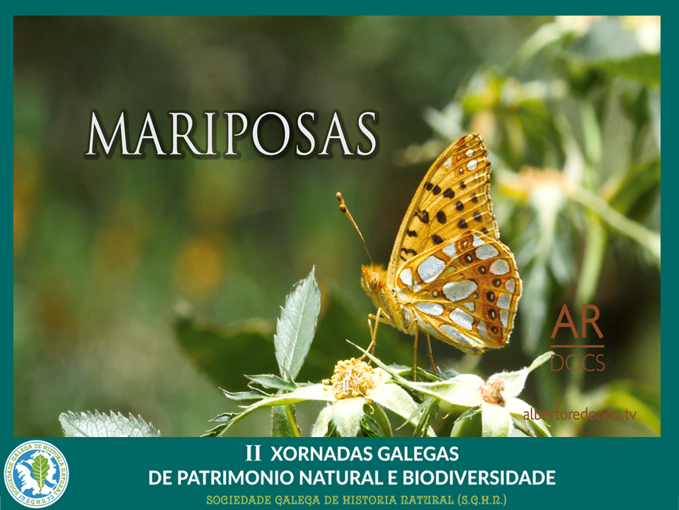 "Documental ""Mariposas"""